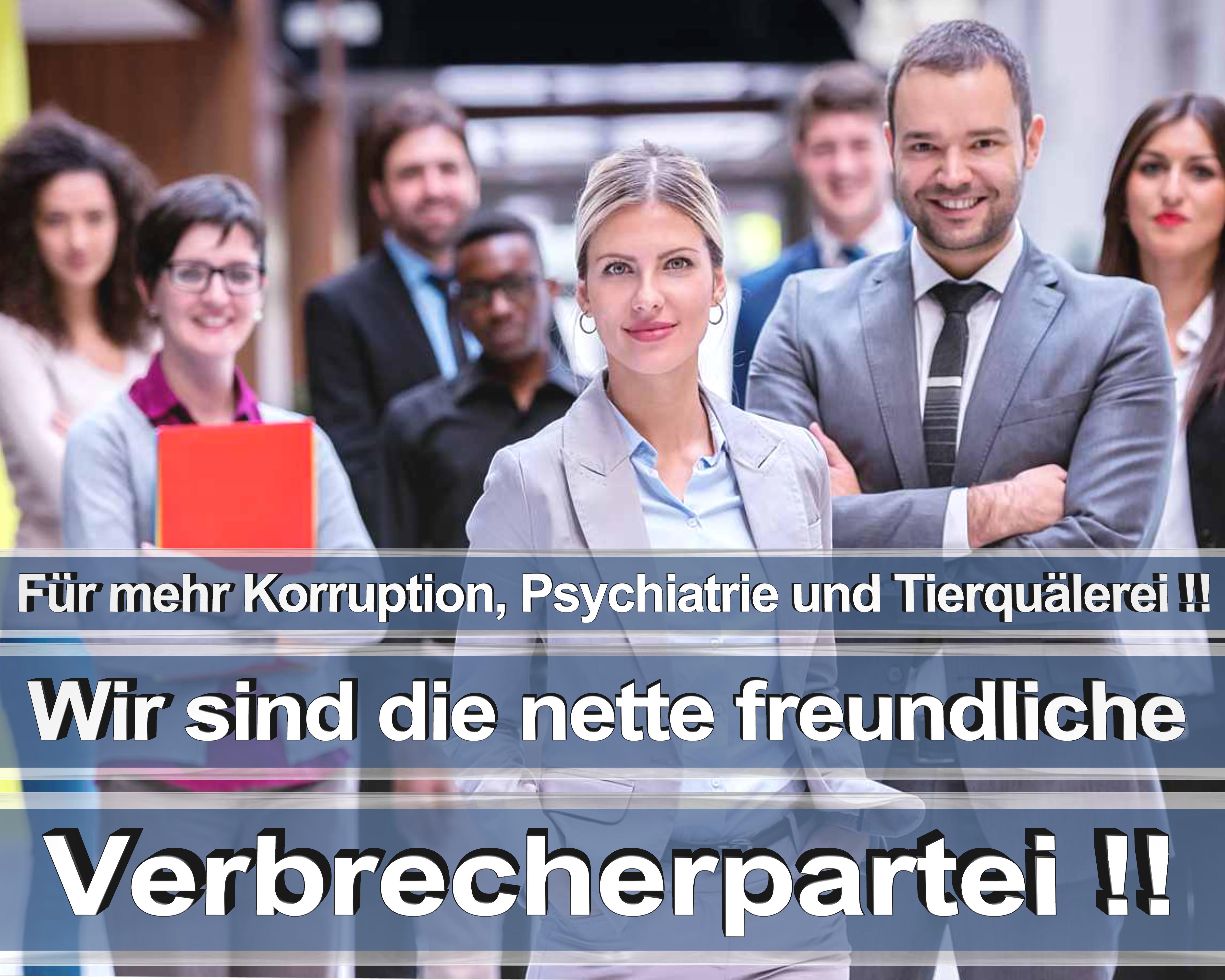 Bundestagswahl 2017 wahlplakate cdu spd angela merkel frauke petry afd rtl zdf ard arte (11)