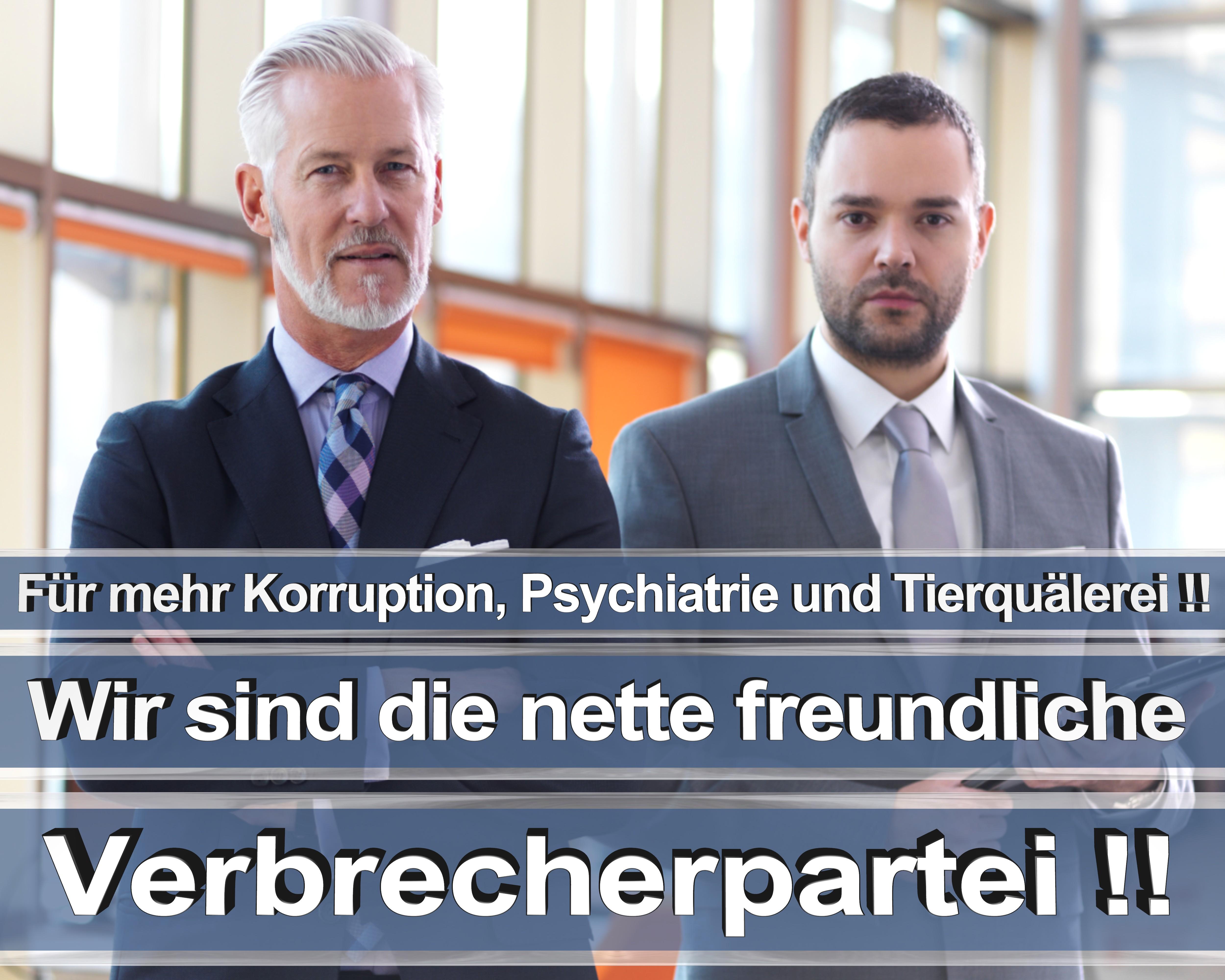 Bundestagswahl 2017 wahlplakate cdu spd angela merkel frauke petry afd rtl zdf ard arte (14)