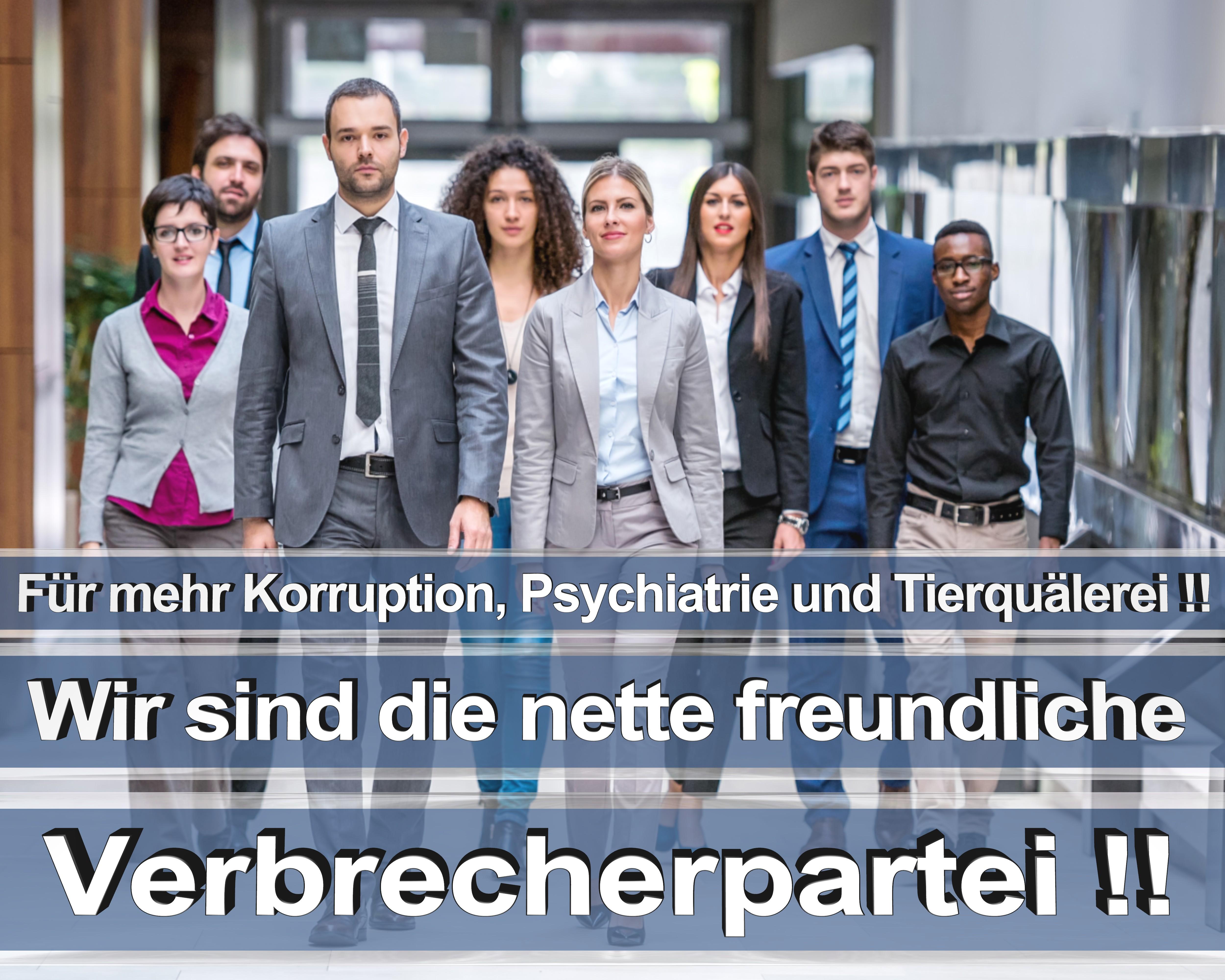 Bundestagswahl 2017 wahlplakate cdu spd angela merkel frauke petry afd rtl zdf ard arte (5)