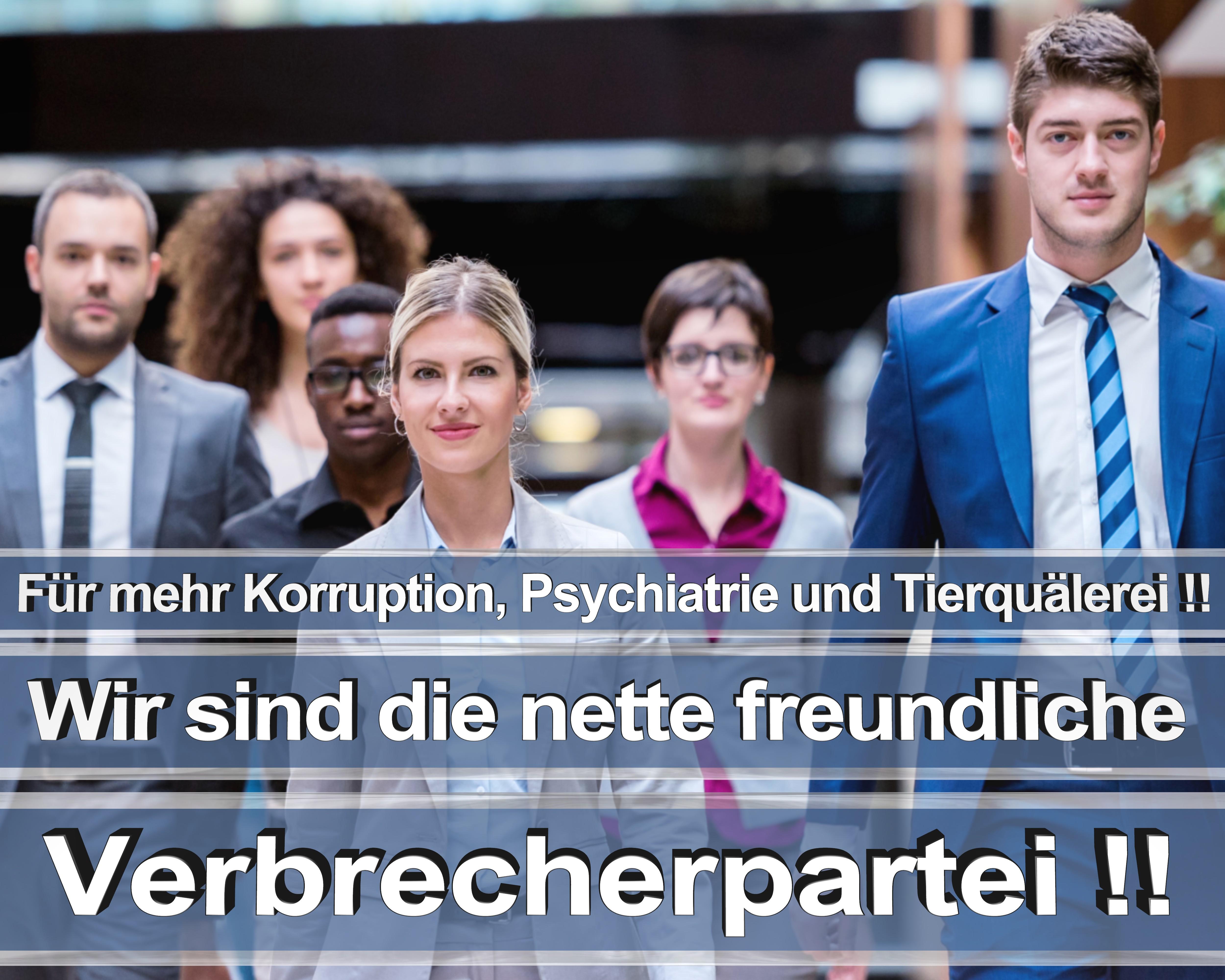Bundestagswahl 2017 wahlplakate cdu spd angela merkel frauke petry afd rtl zdf ard arte (7)