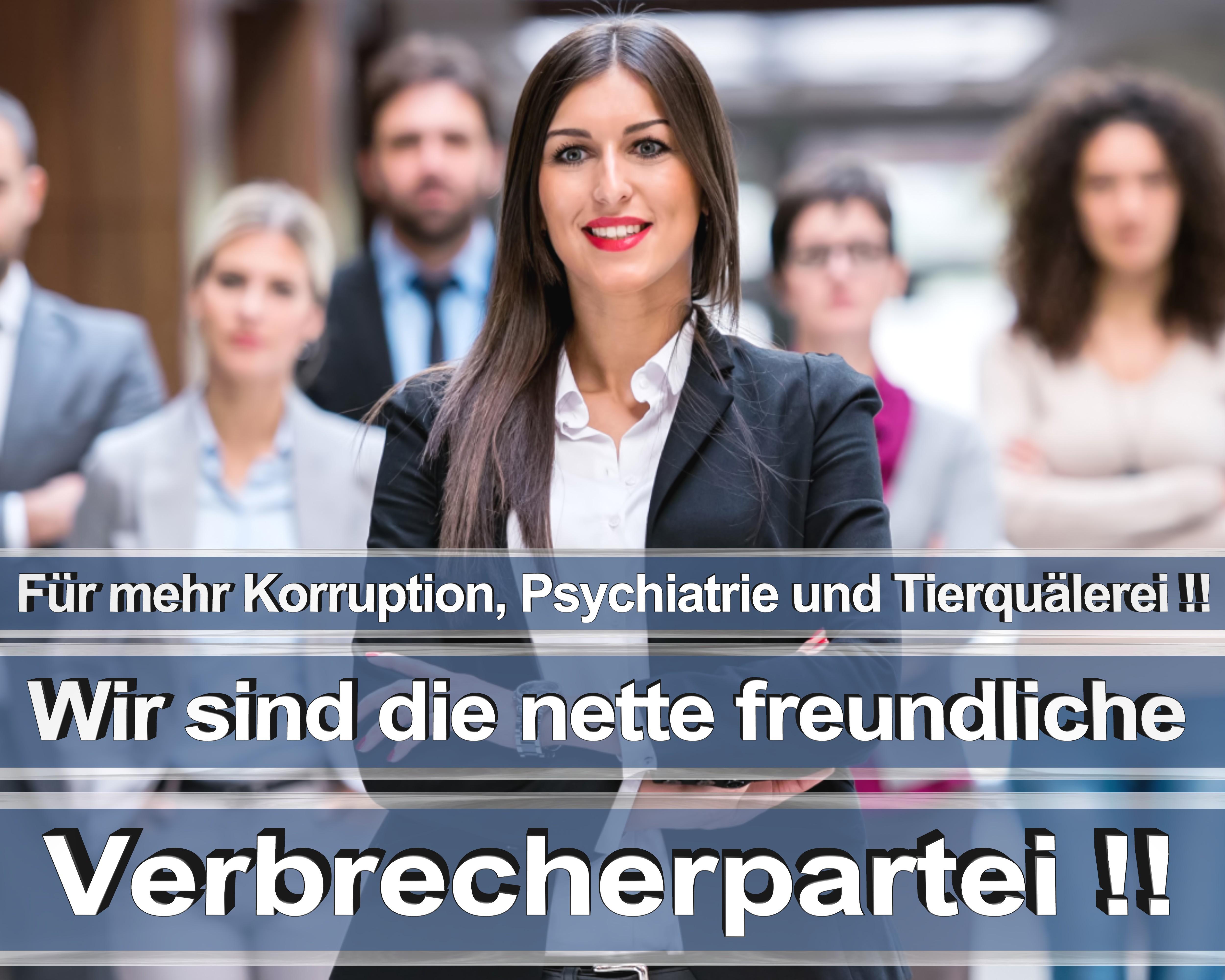 Bundestagswahl 2017 wahlplakate cdu spd angela merkel frauke petry afd rtl zdf ard arte (8)