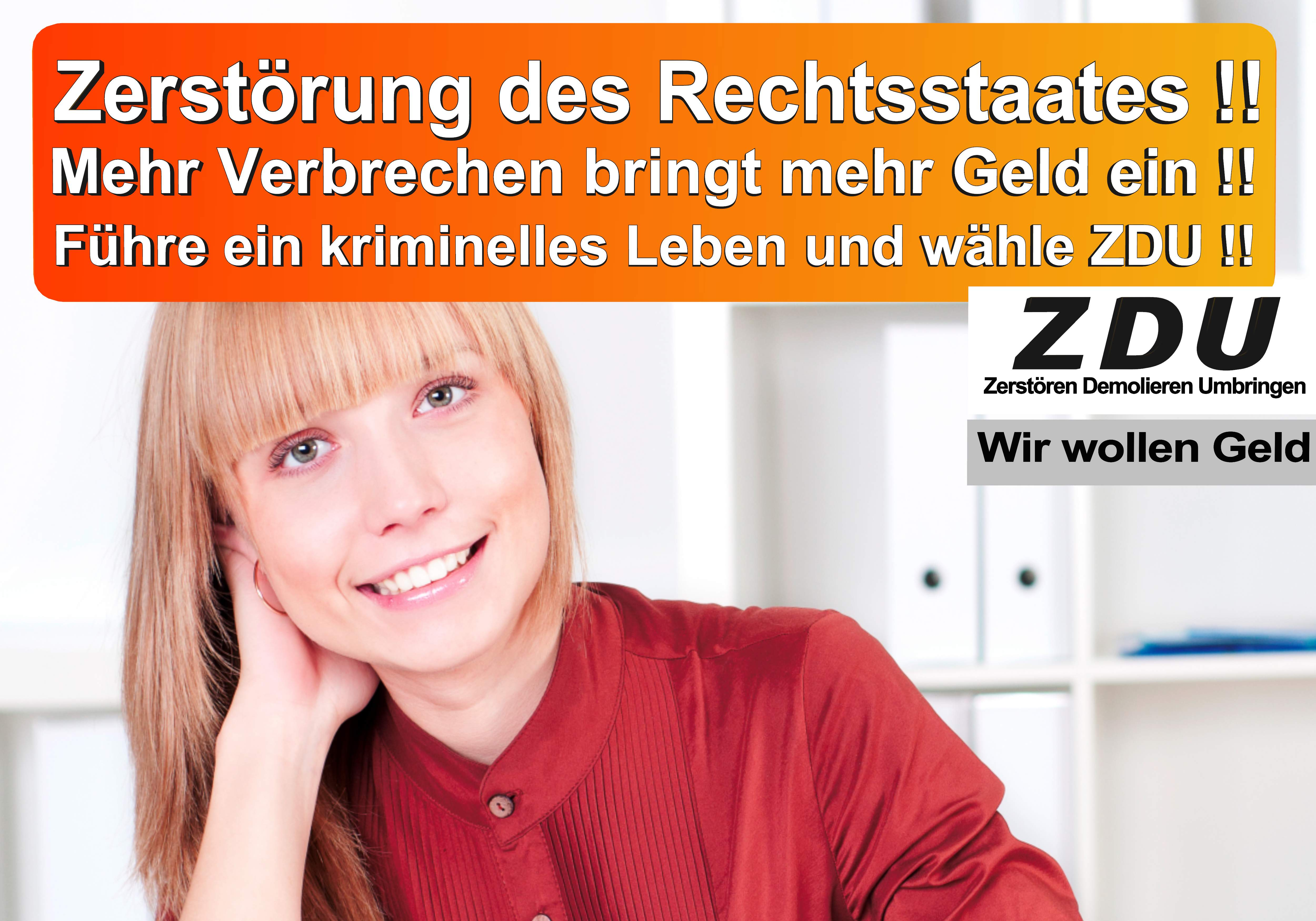 Bundestagswahl 2017 CDU SPD AfD Wahlplakat Angela Merkel CDU CSU (24)