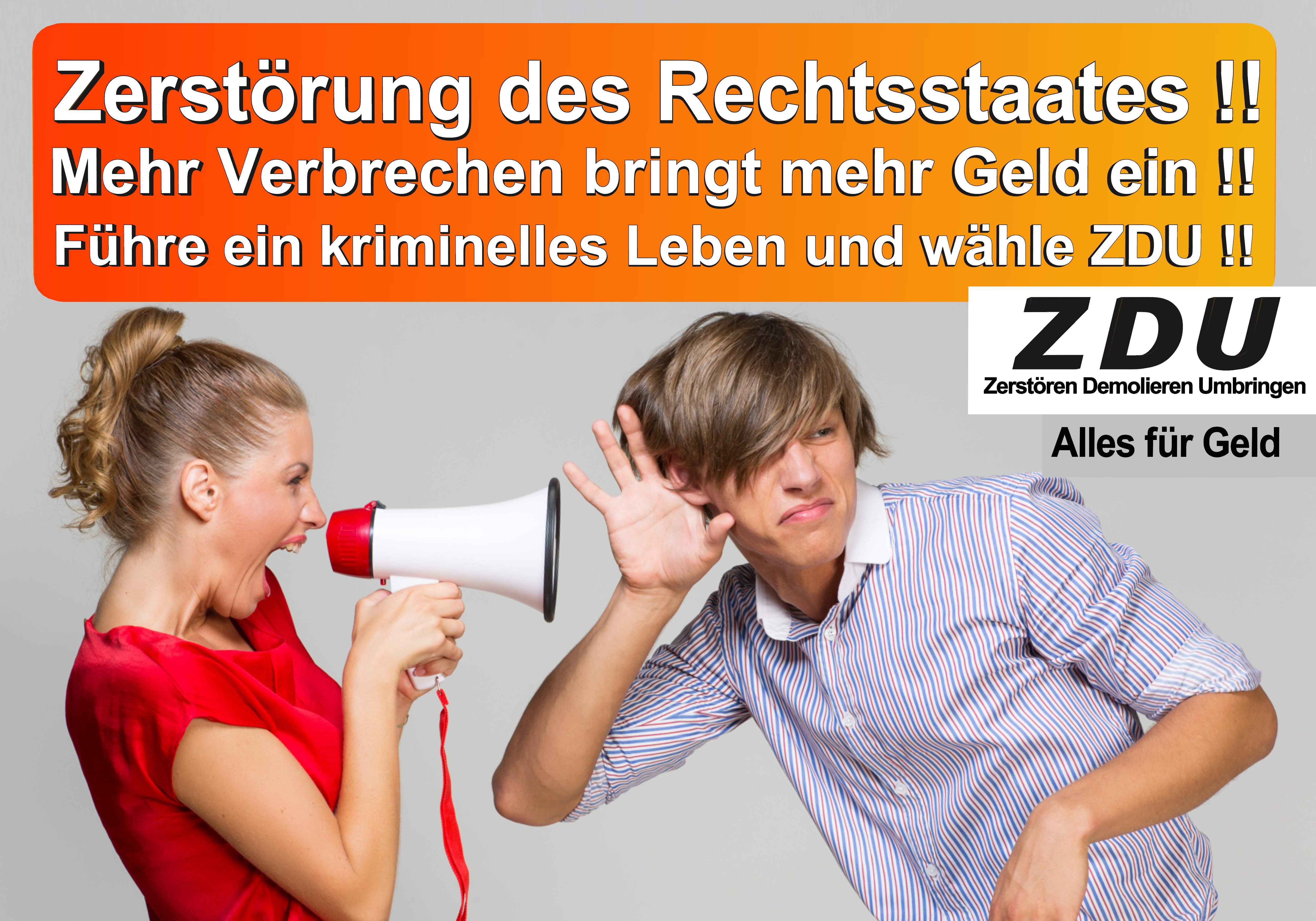 Bundestagswahl 2017 CDU SPD AfD Wahlplakat Angela Merkel CDU CSU (7)