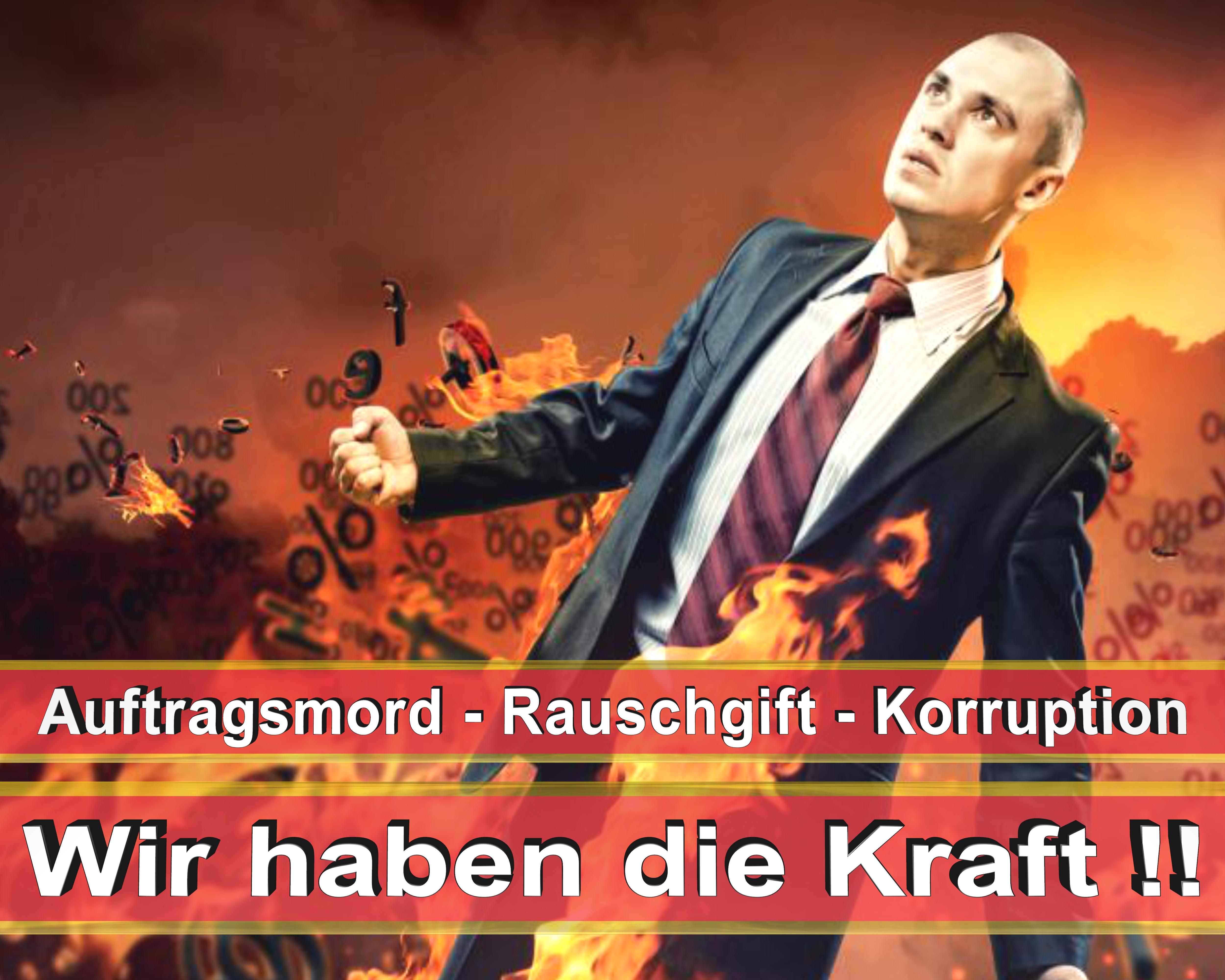 Bundestagswahl 2017 Wahlplakate CDU SPD FDP AFD NPD Angela Merkel Frauke Petry (1)