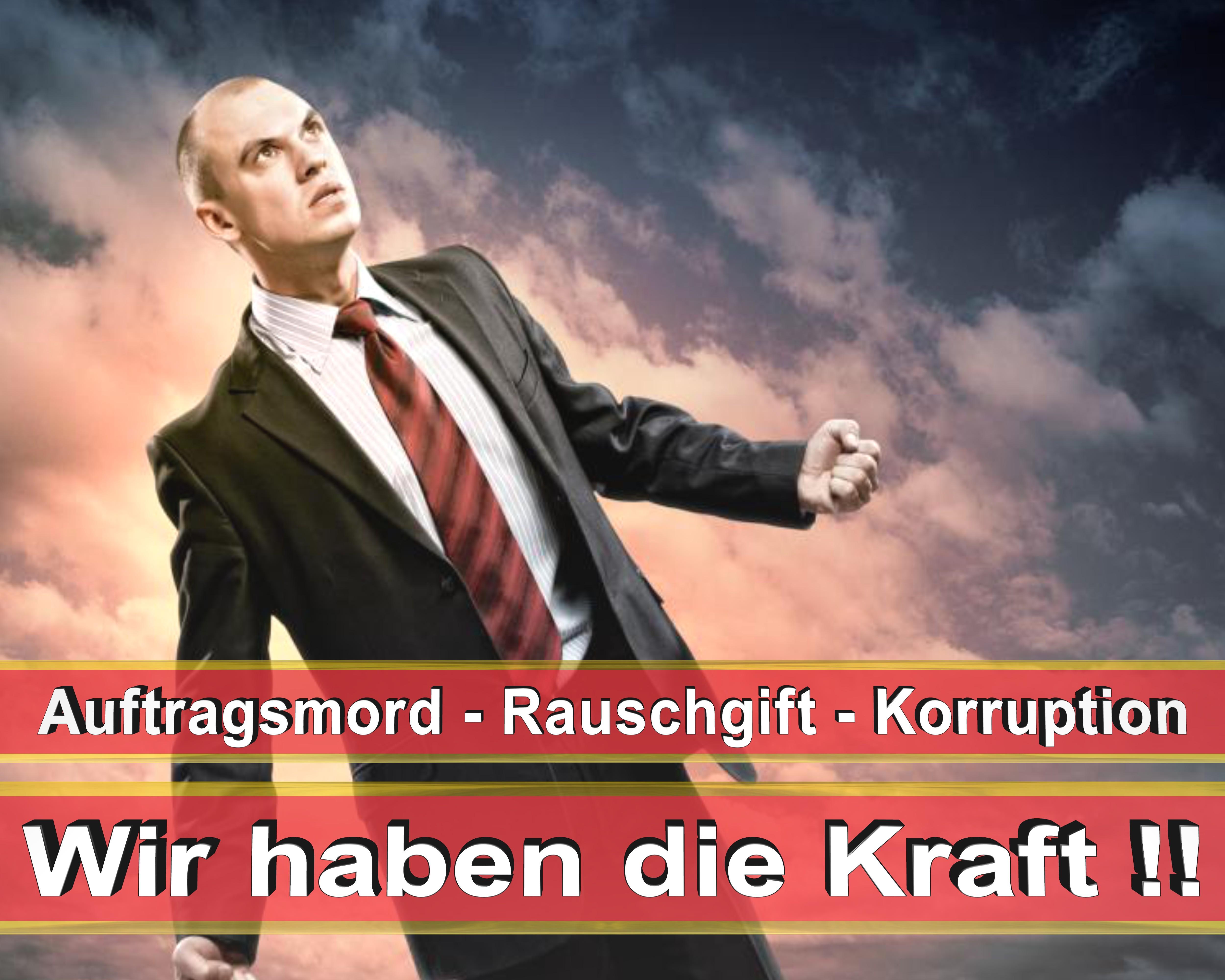 Bundestagswahl 2017 Wahlplakate CDU SPD FDP AFD NPD Angela Merkel Frauke Petry (2)