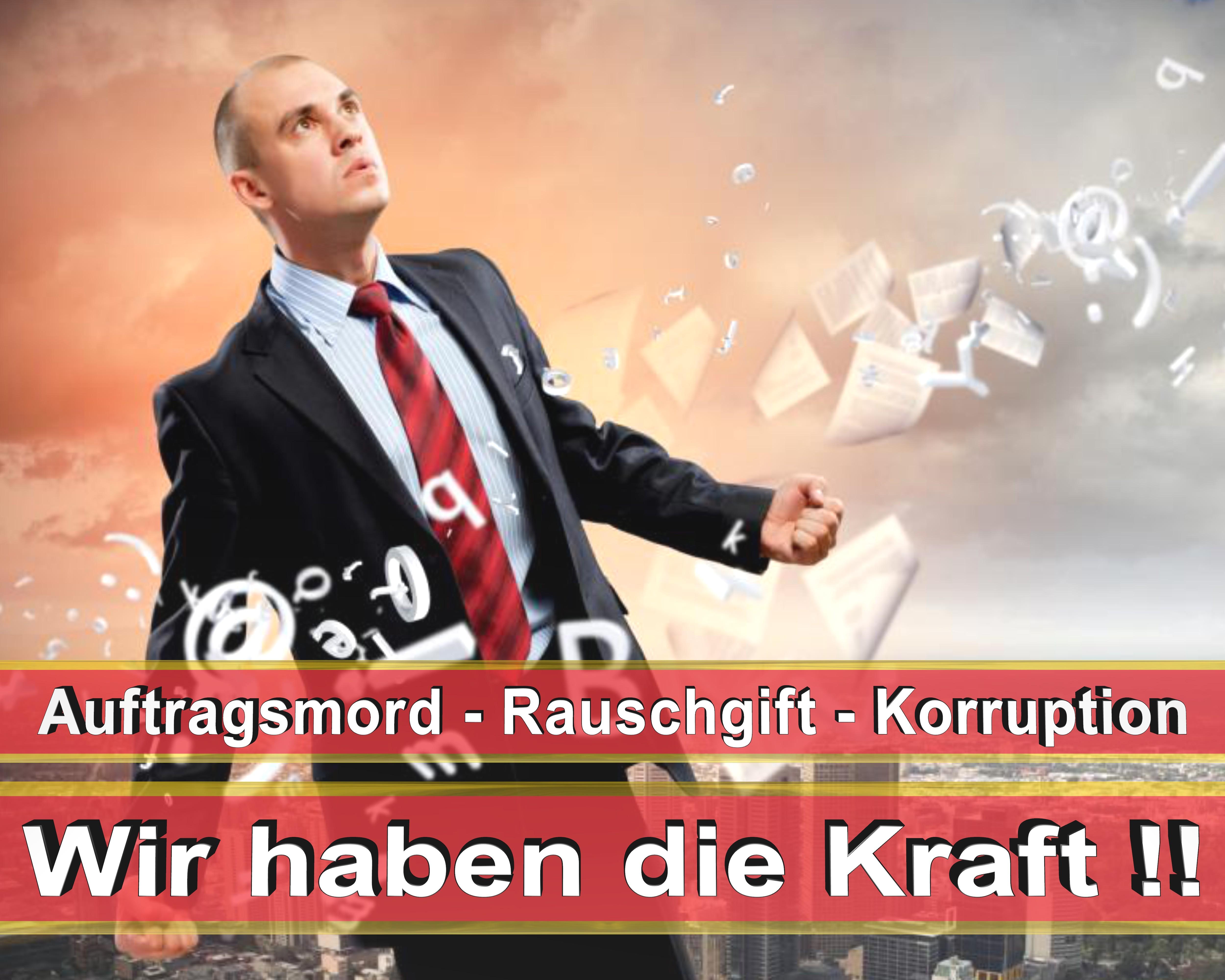Bundestagswahl 2017 Wahlplakate CDU SPD FDP AFD NPD Angela Merkel Frauke Petry (4)