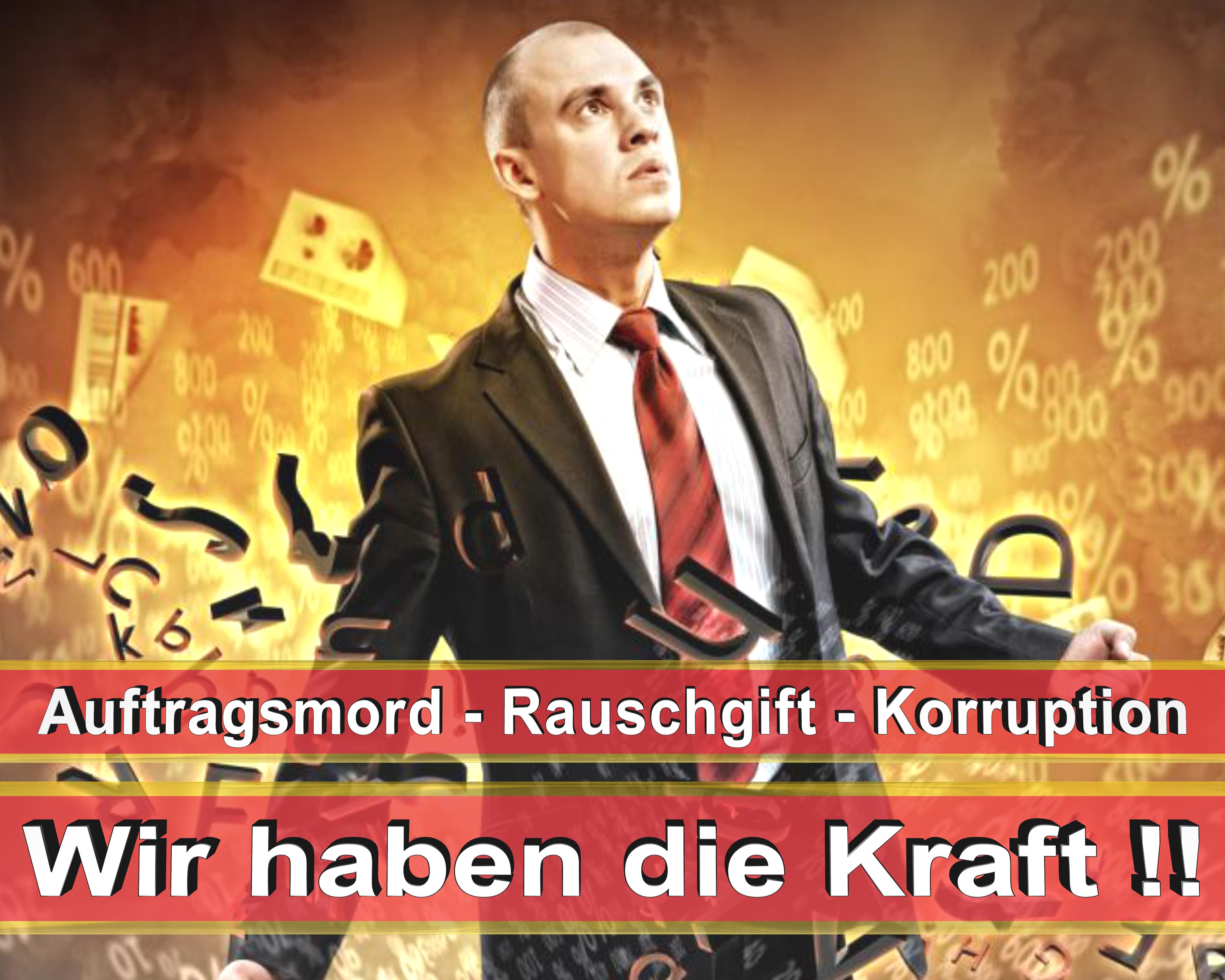 Bundestagswahl 2017 Wahlplakate CDU SPD FDP AFD NPD Angela Merkel Frauke Petry