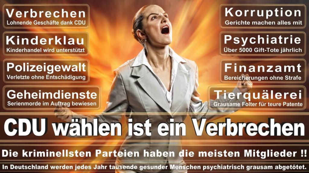 Landtagswahl-2016-CDU (116)