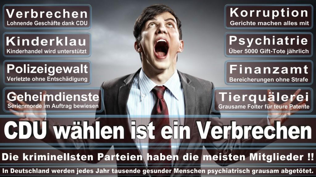 Landtagswahl-2016-CDU (117)