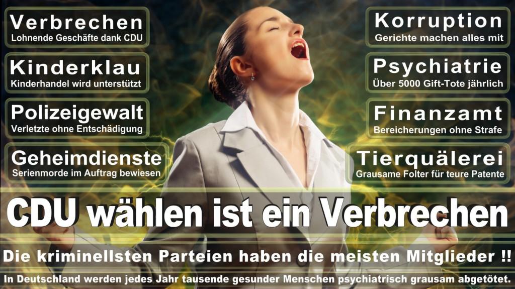 Landtagswahl-2016-CDU (119)