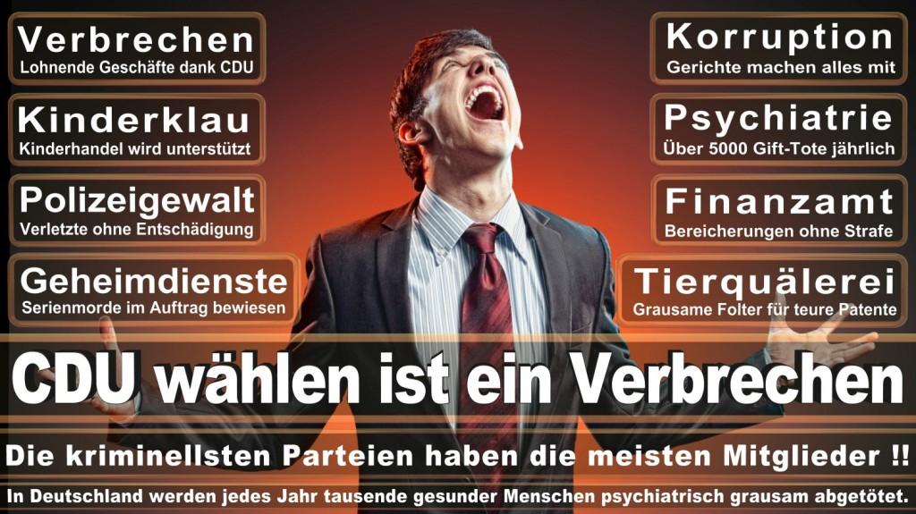 Landtagswahl-2016-CDU (120)
