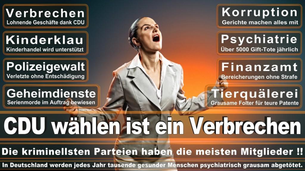 Landtagswahl-2016-CDU (121)