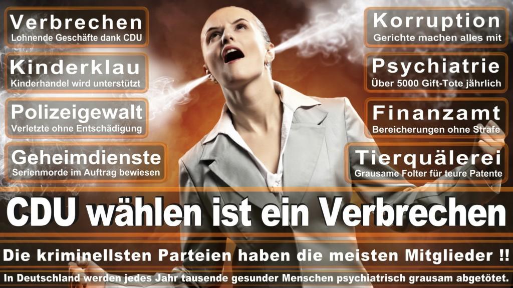 Landtagswahl-2016-CDU (122)