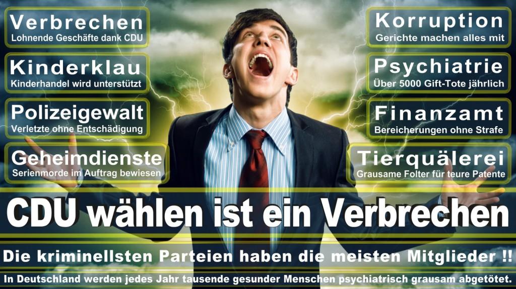 Landtagswahl-2016-CDU (124)