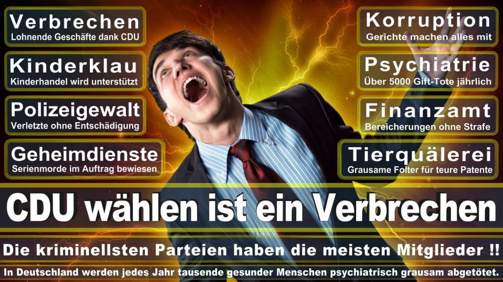 Landtagswahl-2016-CDU (125)