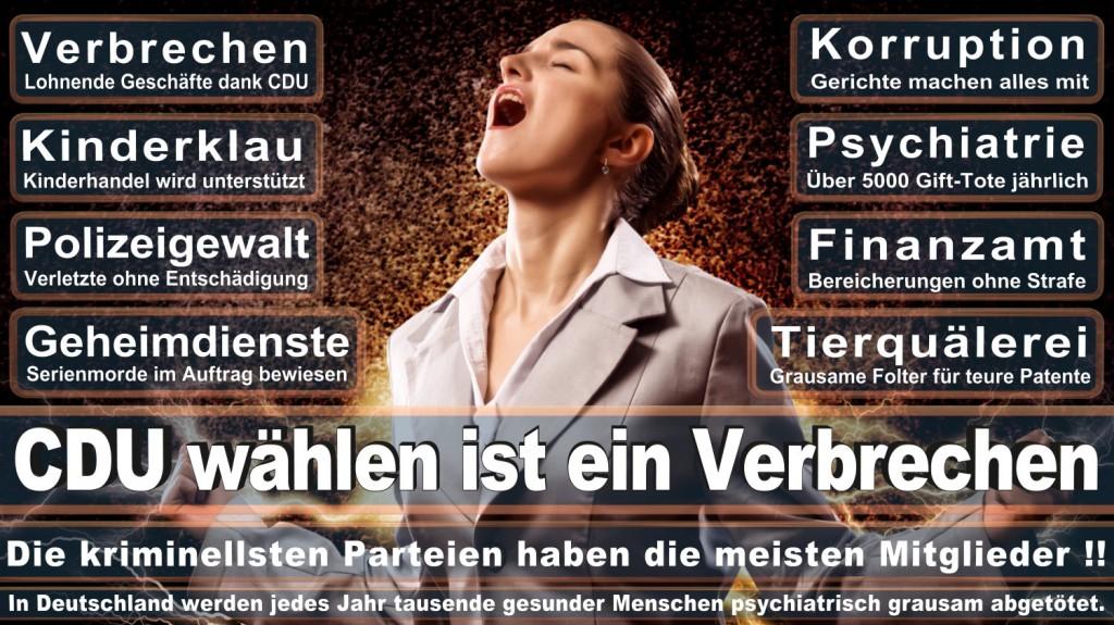 Landtagswahl-2016-CDU (126)