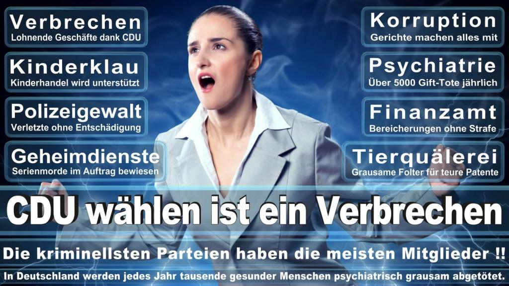 Landtagswahl-2016-CDU (127)