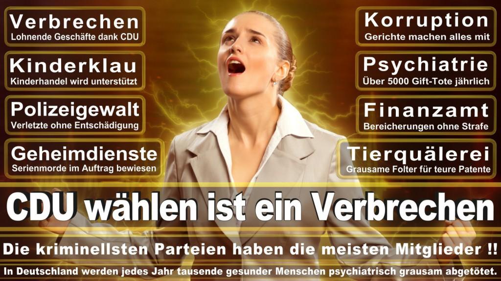 Landtagswahl-2016-CDU (130)