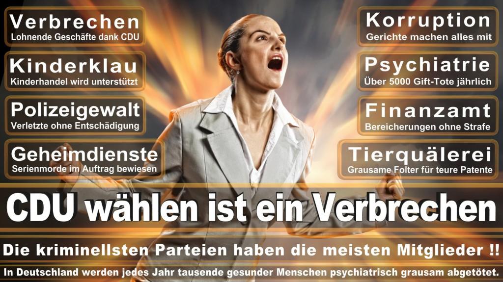 Landtagswahl-2016-CDU (131)