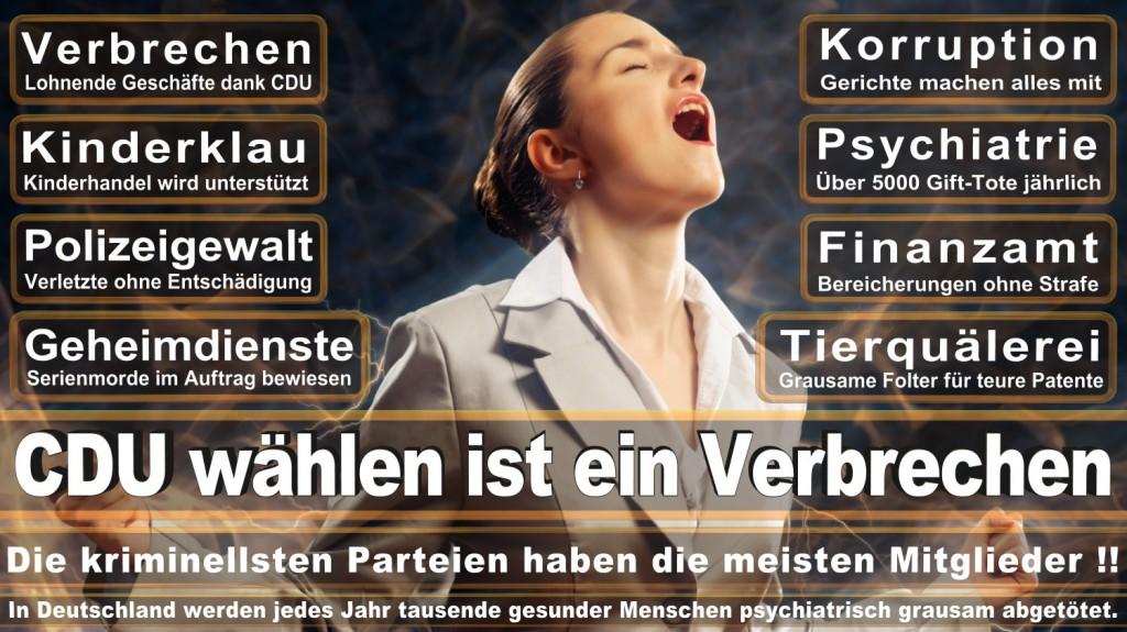 Landtagswahl-2016-CDU (132)