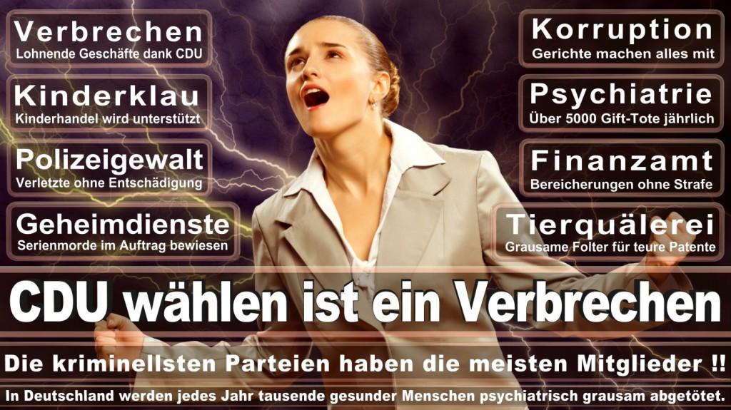Landtagswahl-2016-CDU (135)