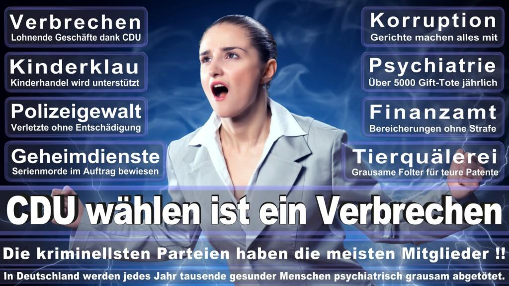 Landtagswahl-2016-CDU (137)