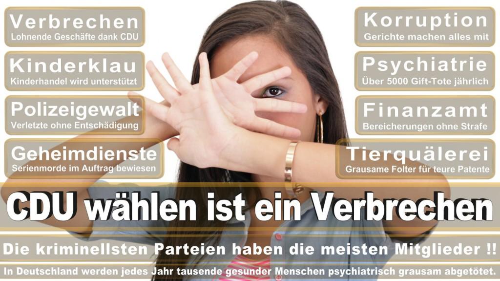 Landtagswahl-2016-CDU (140)