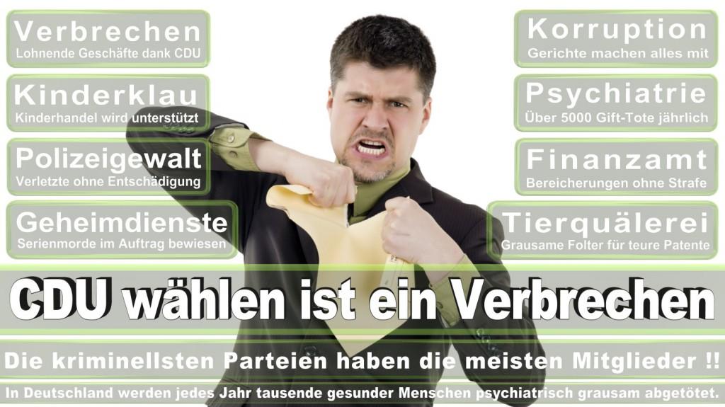Landtagswahl-2016-CDU (142)