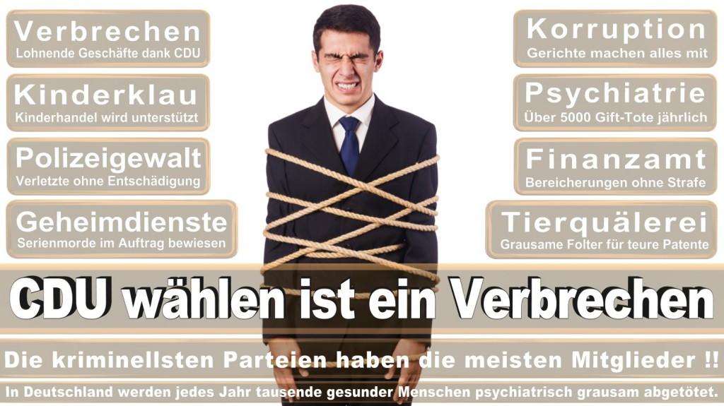 Landtagswahl-2016-CDU (143)