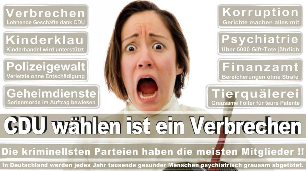 Landtagswahl-2016-CDU (144)