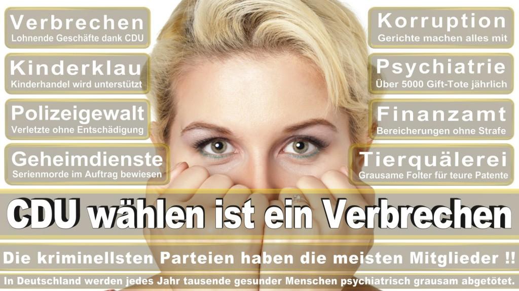 Landtagswahl-2016-CDU (152)