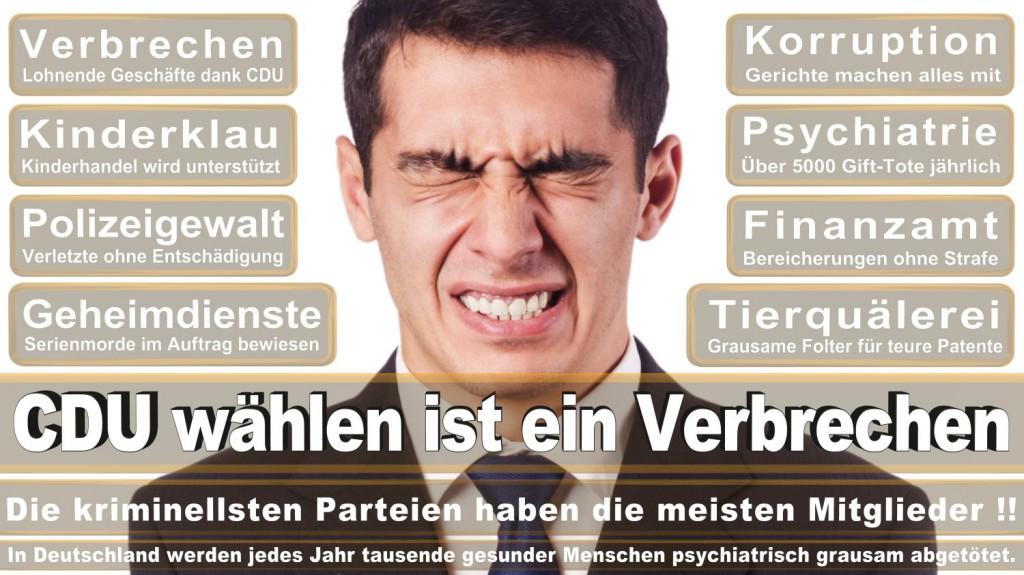 Landtagswahl-2016-CDU (156)