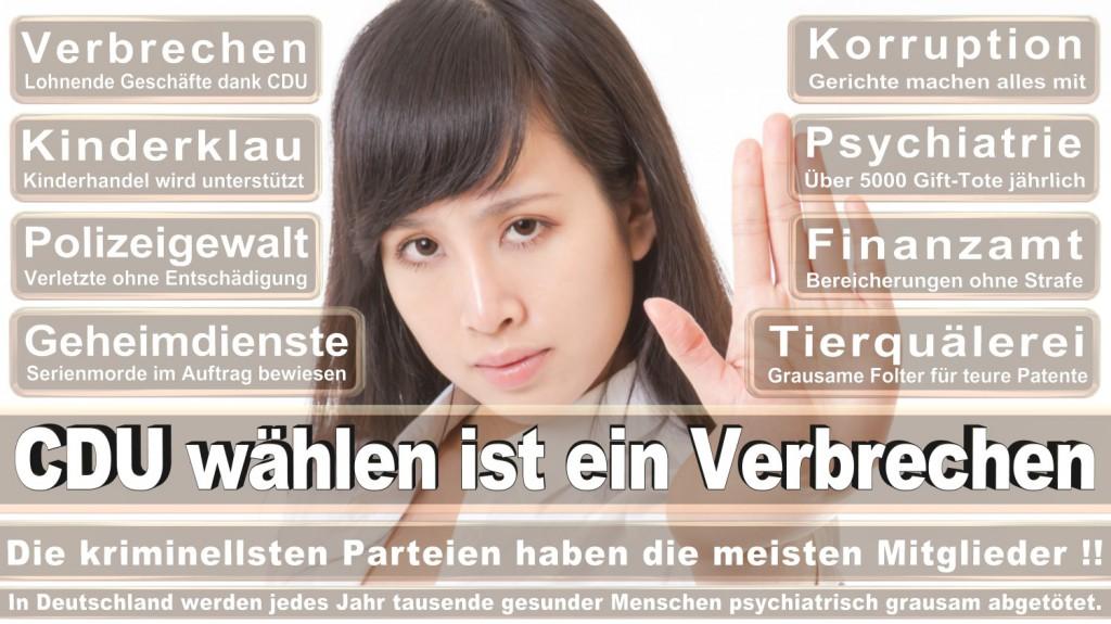 Landtagswahl-2016-CDU (161)
