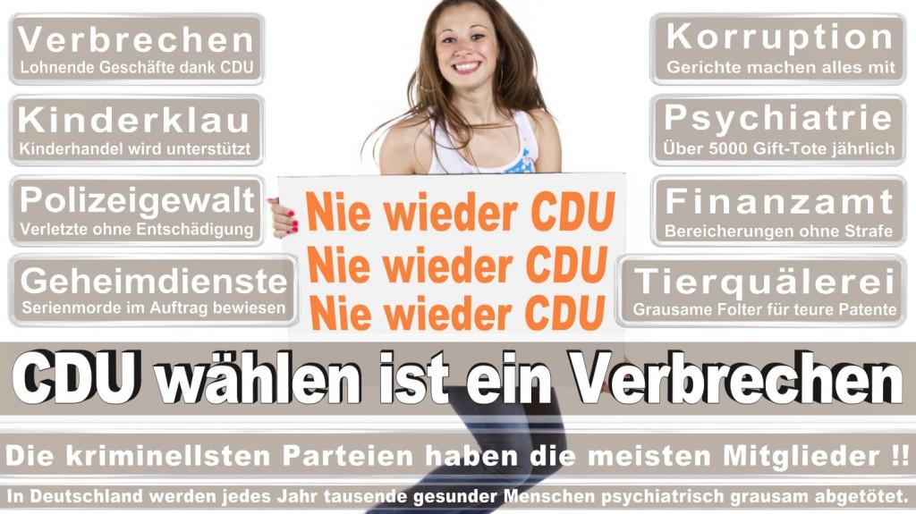 Landtagswahl-2016-CDU (163)