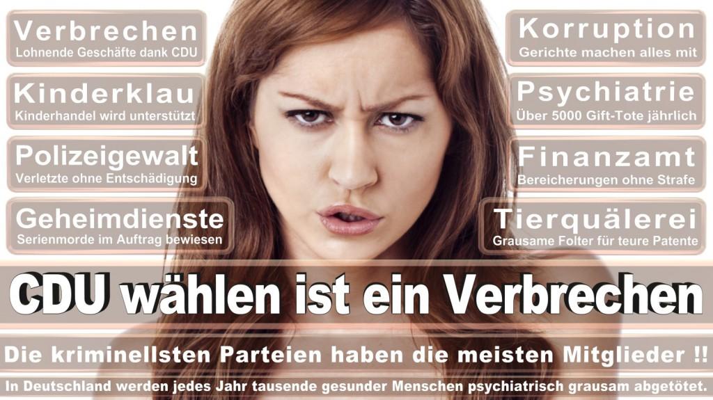 Landtagswahl-2016-CDU (166)