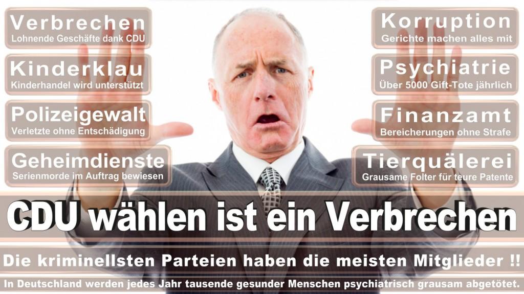 Landtagswahl-2016-CDU (168)