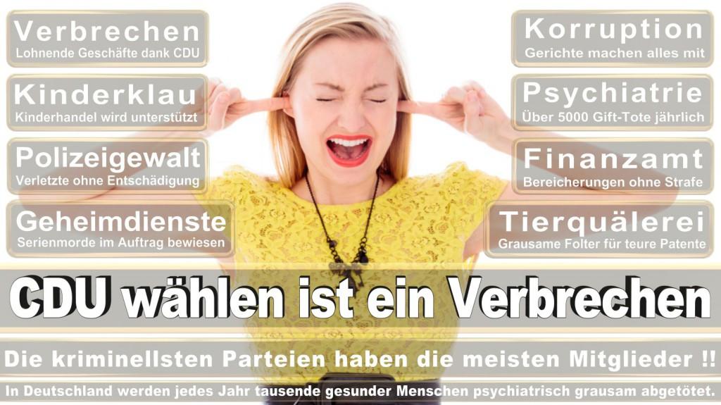 Landtagswahl-2016-CDU (173)