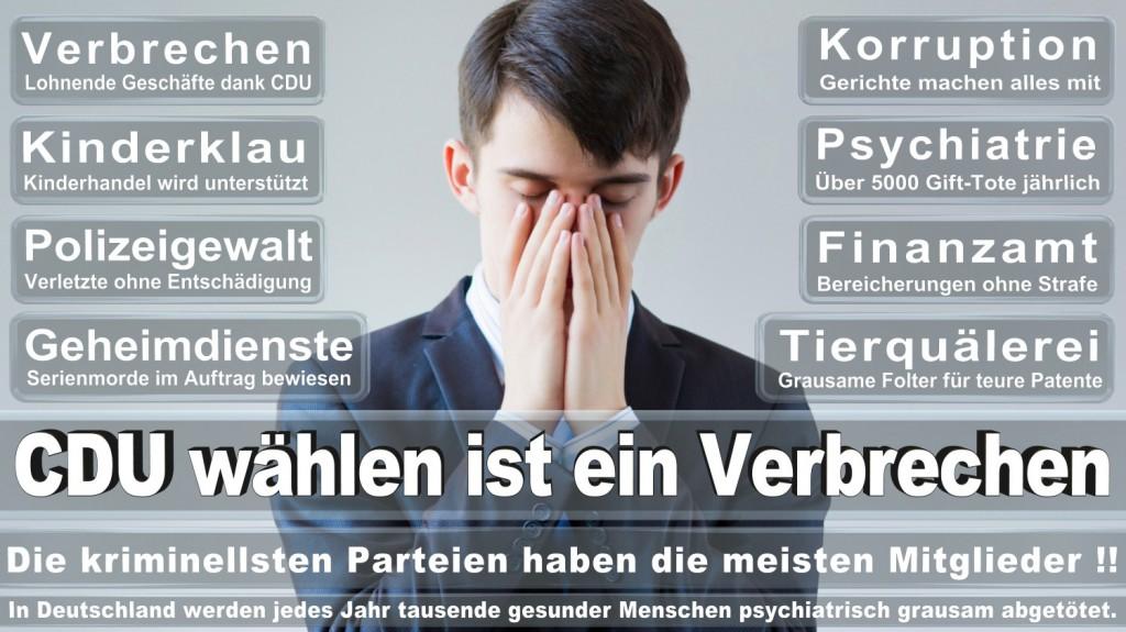 Landtagswahl-2016-CDU (182)