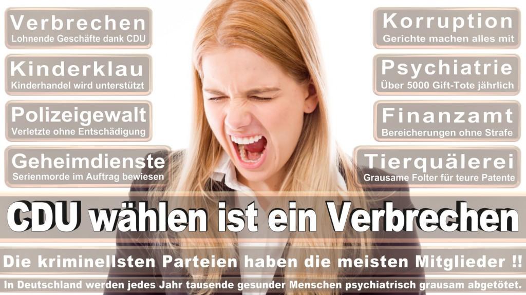 Landtagswahl-2016-CDU (184)