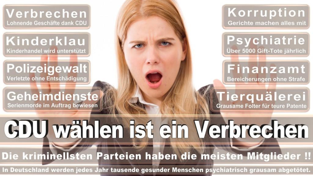 Landtagswahl-2016-CDU (187)