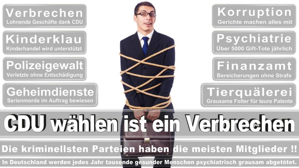 Landtagswahl-2016-CDU (190)