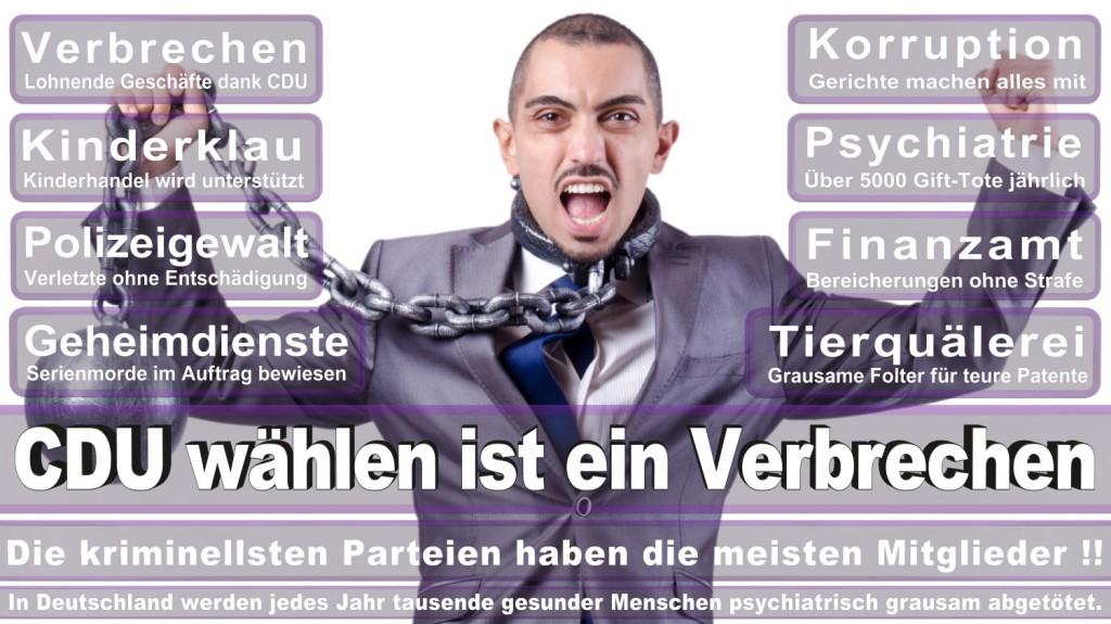 Landtagswahl-2016-CDU (191)