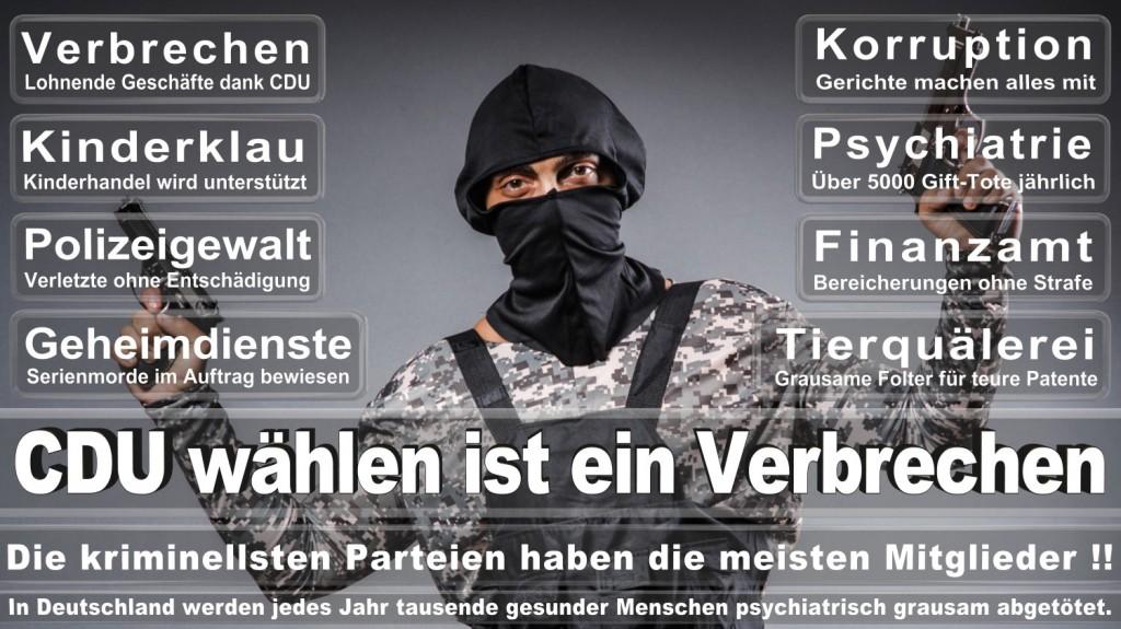 Landtagswahl-2016-CDU (192)
