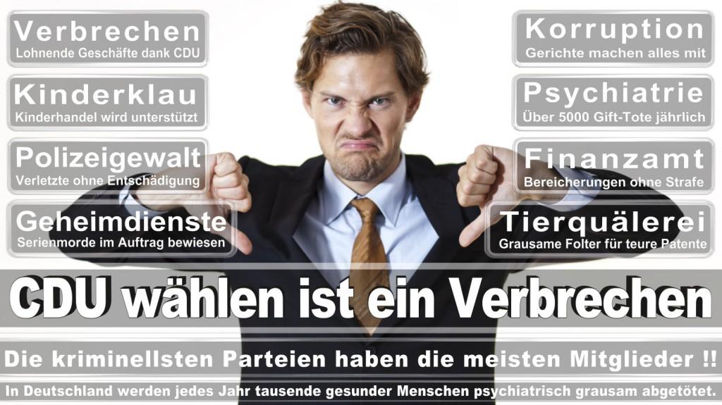 Landtagswahl-2016-CDU (196)
