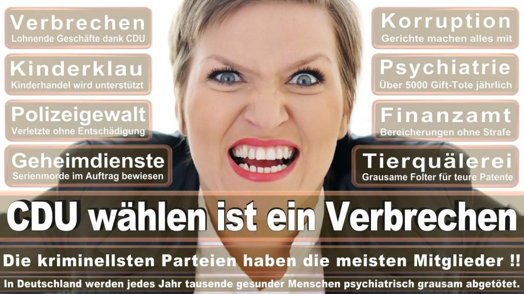 Landtagswahl-2016-CDU (197)
