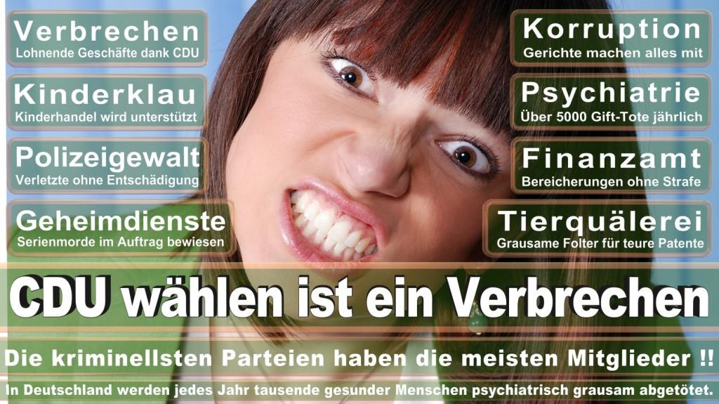 Landtagswahl-2016-CDU (198)