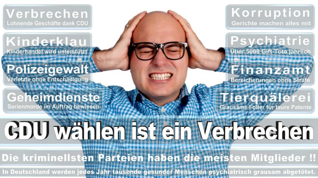 Landtagswahl-2016-CDU (204)