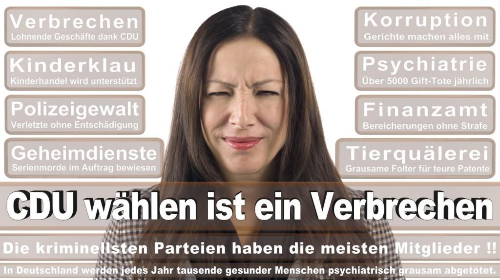 Landtagswahl-2016-CDU (206)