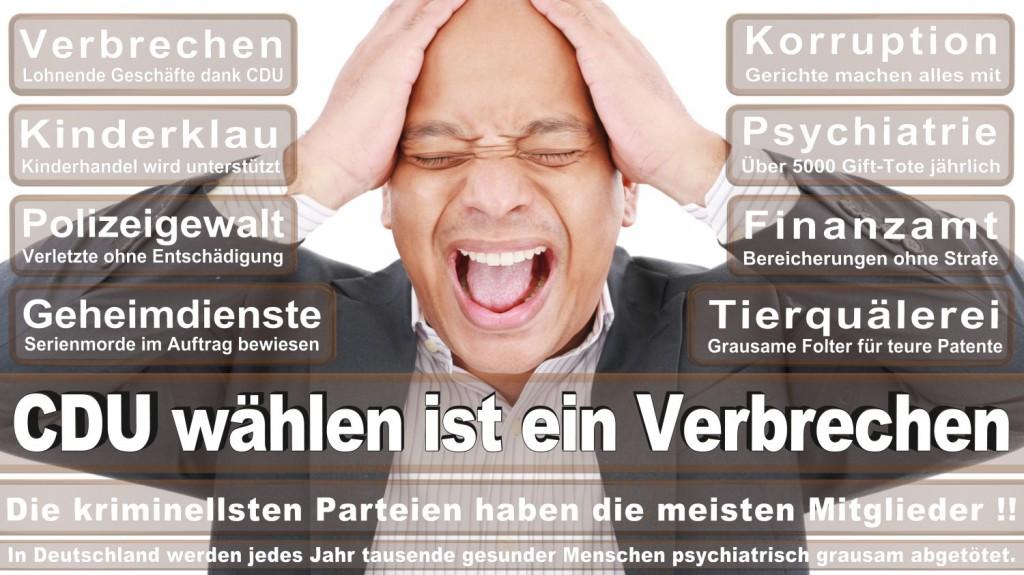 Landtagswahl-2016-CDU (207)