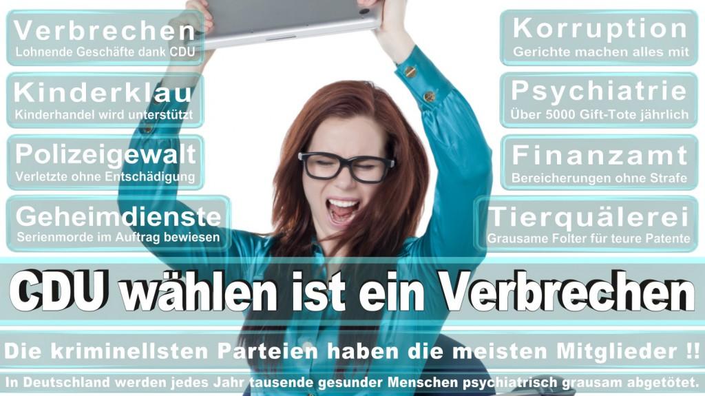 Landtagswahl-2016-CDU (209)